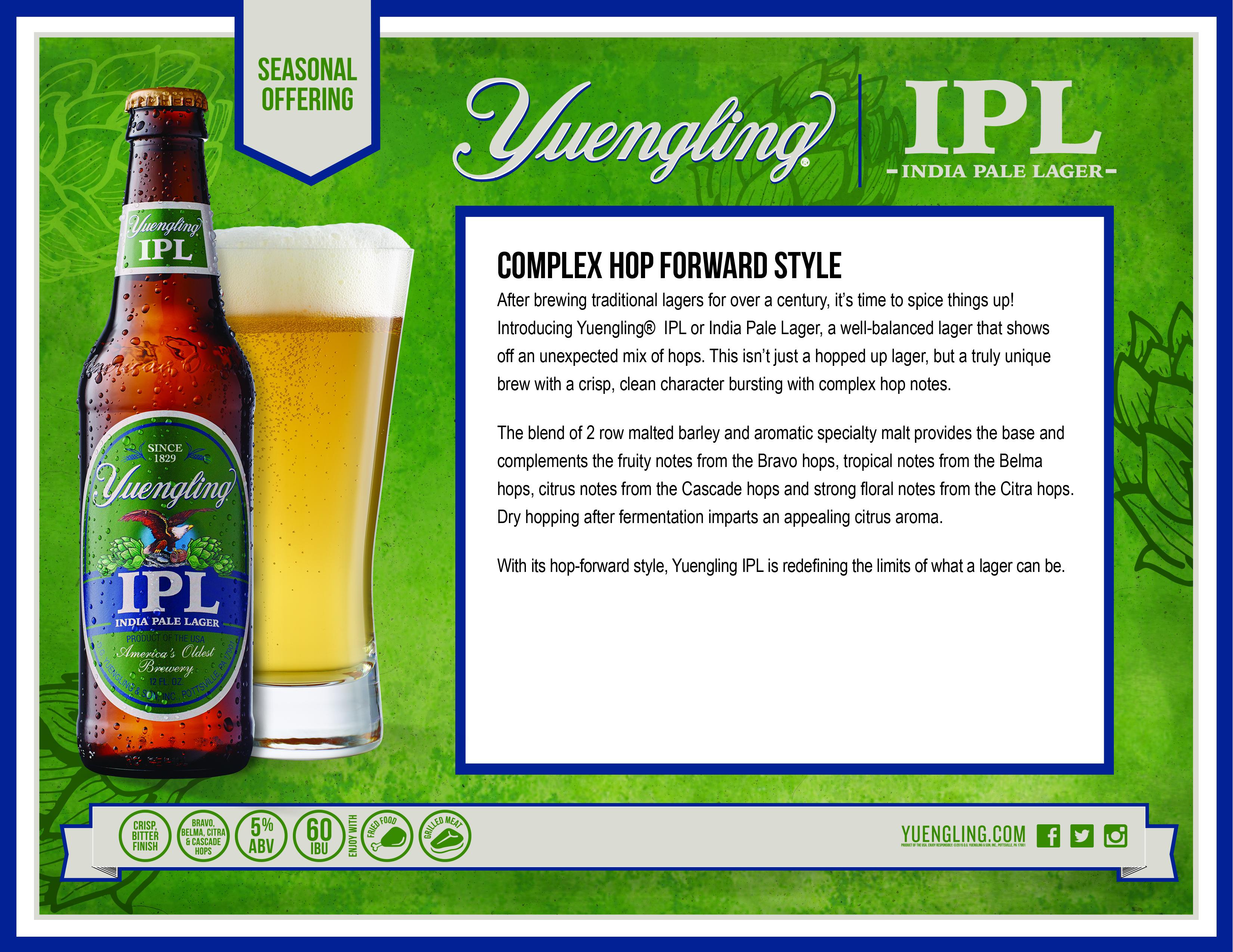 Yuengling IPL - Crescent Beer Distributor